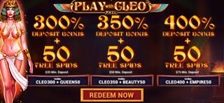 Play-with-Cleo banner